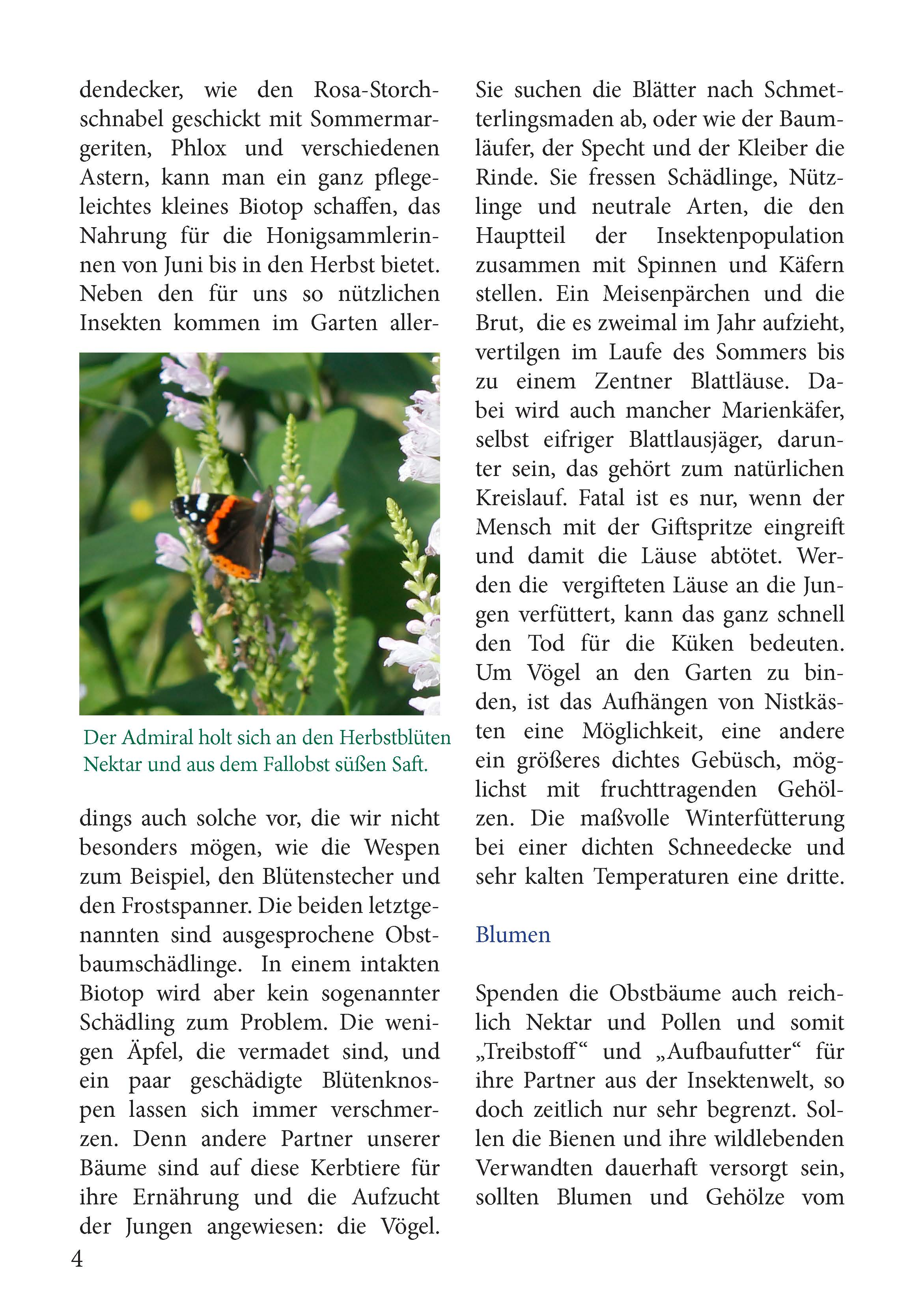 Bienen Partner pressedienst land garten bienen und blumen als partner der obstbäume